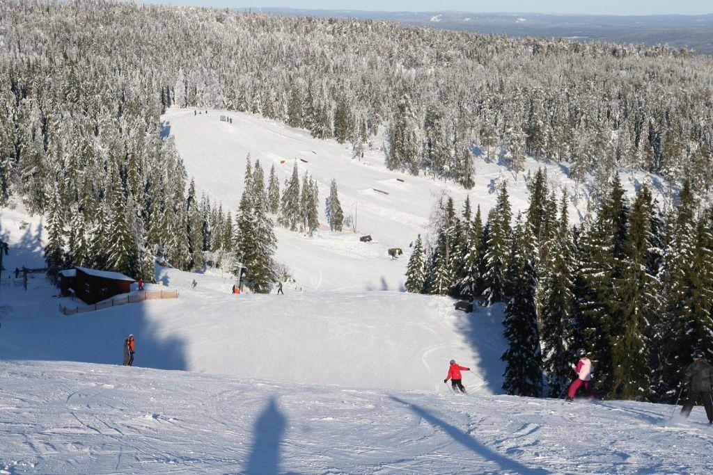 Sagen skien Hovfjallet