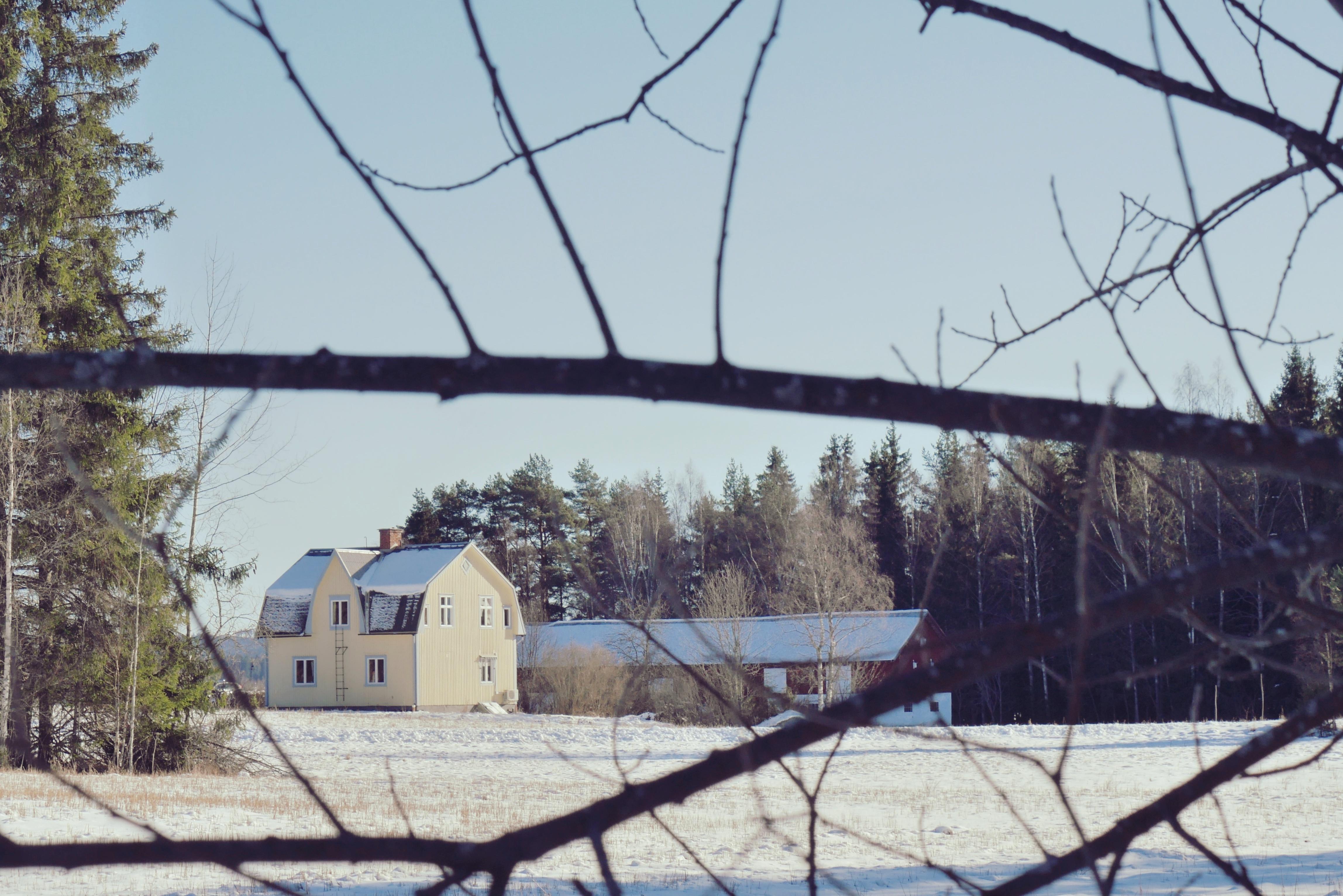 Sagen-winter-door-takken